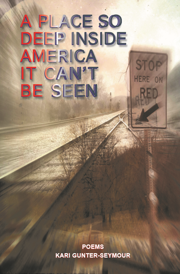 Review of Kari Gunter-Seymour's A Place So Deep Inside America It Can't Be Seen
